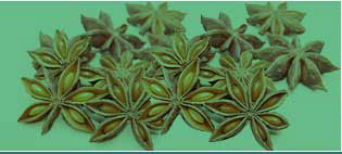 Anise Oil Manufacturers