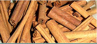 Cinnamon Oils Suppliers