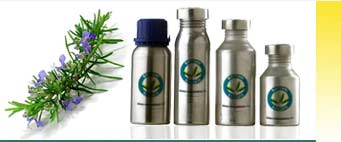 Rosemary Essential Oils Exporters