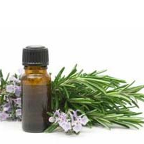 Eucalyptus Oil (BP)